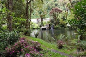 finca-draculas-beautiful-gardens-cerro-punta