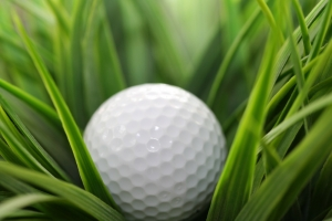 golf-ball_shutterstock_9391543