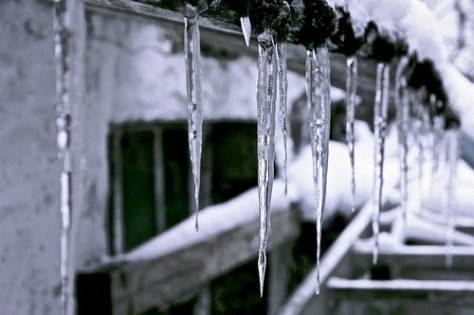 icicles16