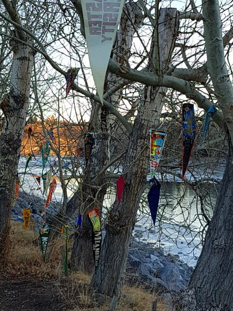 banners on trees