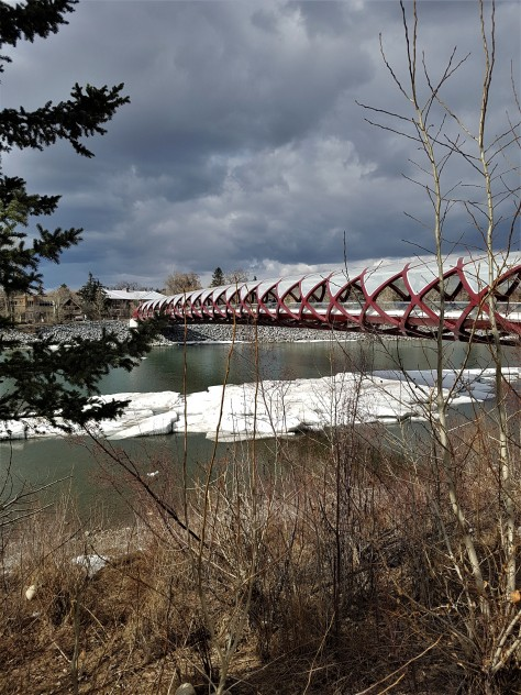 Peace Bridge (2)